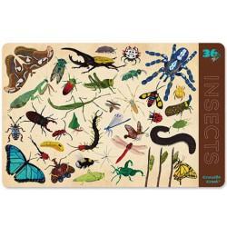 Placemat met 36 insecten