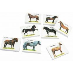 Gomme Cheval
