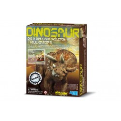 Dino Triceratops opgraven