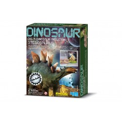 Dino Stegosaurus opgraven
