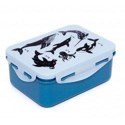 Lunchbox Zeedieren