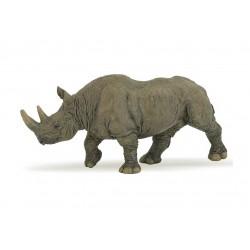 Rhinocéros