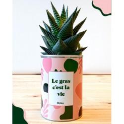 """Plant """"Le gras, c'est la vie"""""""