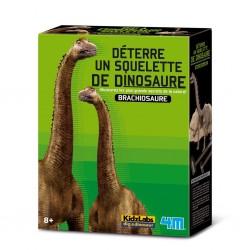 Dino Brachiosaurus opgraven