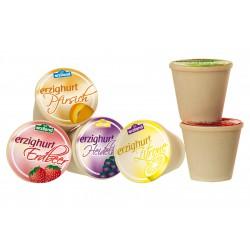 Houten Vruchtenyoghurt (per stuk)