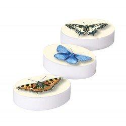 Gomme Papillon